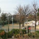 3月17日朝8時 見徳山公園