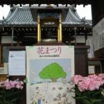 花祭り写経会